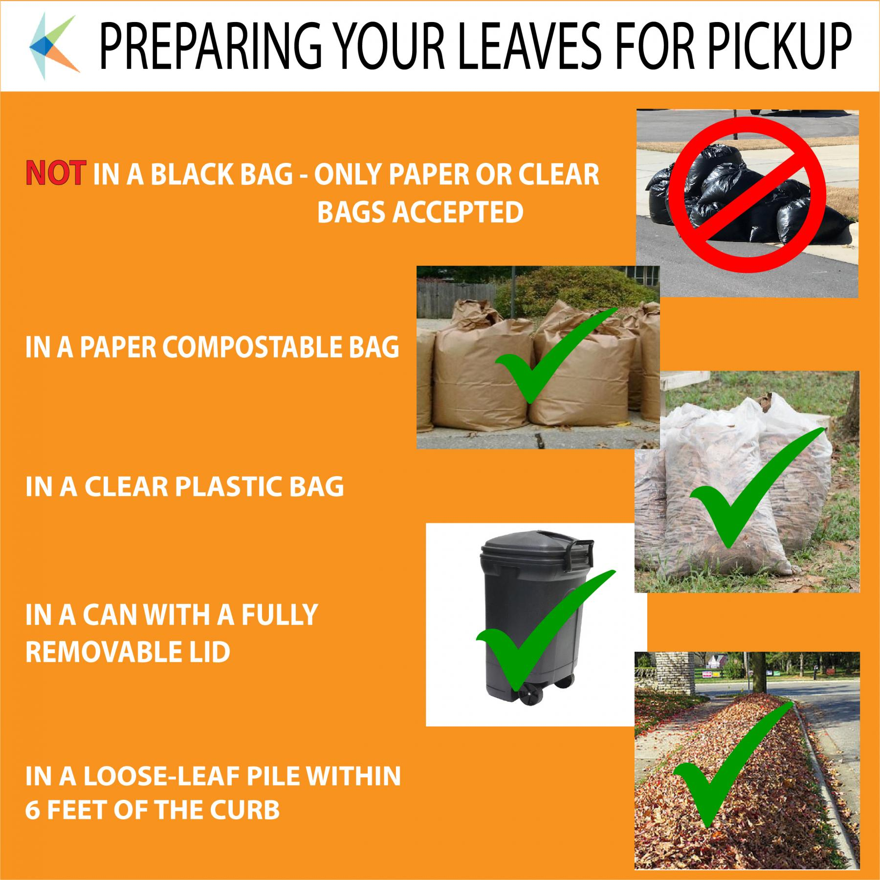 Use Clear and Paper Bags