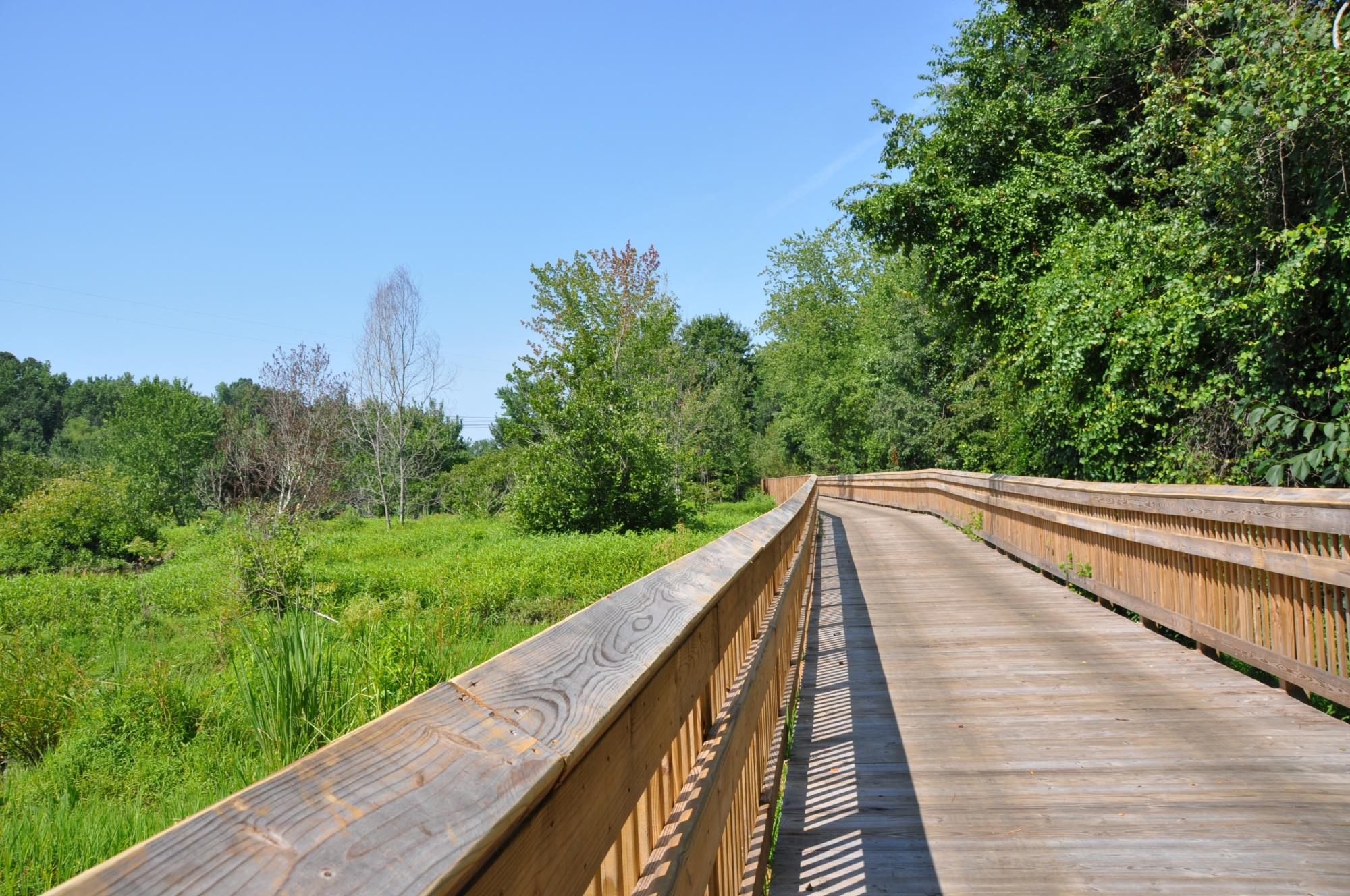 Knightdale Greenway Picture